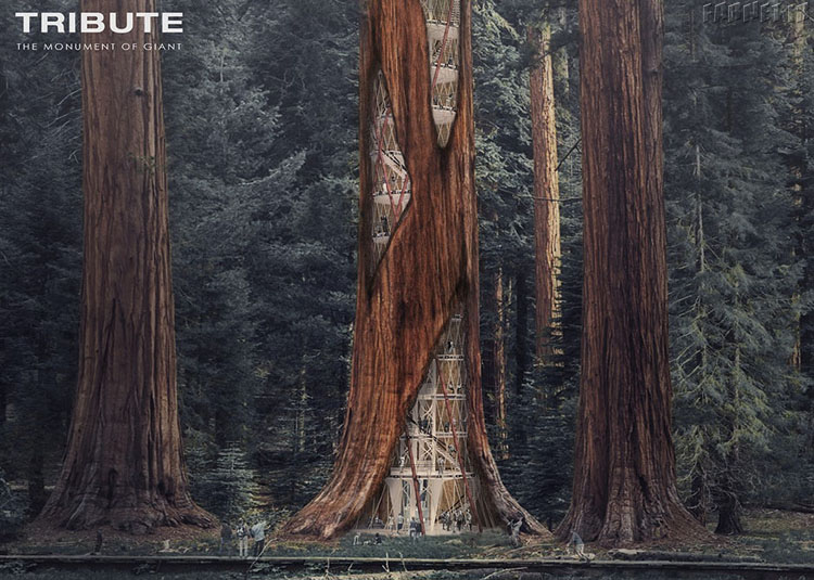 The Giant Sequoia Skyscraper